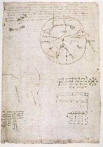 Leonardo / Lautbildung Stimme / fol. 114 r von AKG  Images