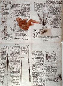 Leonardo / Physiologie des Sehens/f. 118 v von AKG  Images