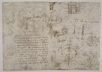 Leonardo / Koitus irrtüml. Studie u. a. f125r von AKG  Images
