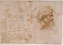 Leonardo / Botanik / Augenheilkunde / fol. 126v von AKG  Images