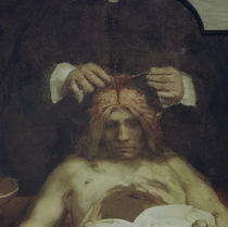 Rembrandt, Anatomie des Dr. J.Deijman by AKG  Images