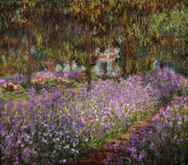 Claude Monet / Flower bed / Irises by AKG  Images
