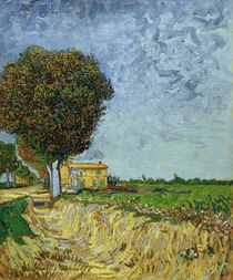 V. v. Gogh, Avenue near Arles by AKG  Images