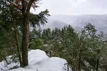 Winterlicher Ausblick by Ronald Nickel