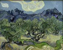 V. van Gogh, Olivenbäume mit Les Alpilles by AKG  Images