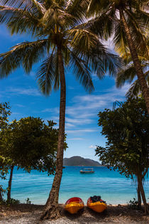 Insel Fitzroy Island Australien by Andreas Stammer