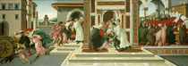 Last Miracle and the Death of St Zenobius / Botticelli / Painting, c.1500 by AKG  Images