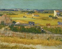 V. v. Gogh, Die Ernte von AKG  Images
