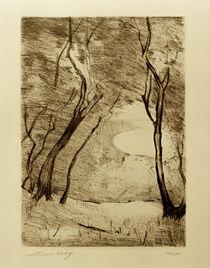 L.Ury, Bäume am Ufer des Grunewaldsees von AKG  Images