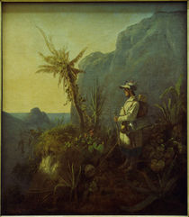 Carl Spitzweg, The Explorer in the Tropics by AKG  Images