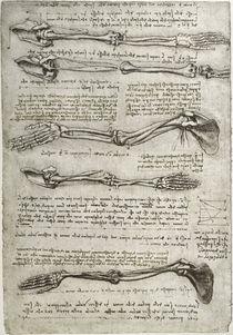 Leonardo / Arm– Handknochen Drehung/f. 135v von AKG  Images