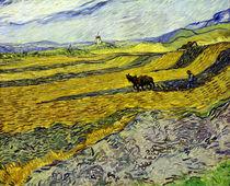 V. van Gogh, Acker mit pflügendem Bauern von AKG  Images