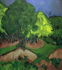 E.L.Kirchner, Landschaft m. Kastanienbaum von AKG  Images