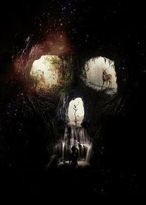 Cave Skull von Ali GULEC