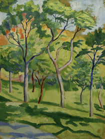 August Macke / Trees on a Meadow by AKG  Images