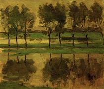 Piet Mondrian, Weidenbäume mit Sonne von AKG  Images