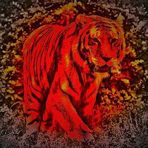 Red Tiger 1 von kattobello
