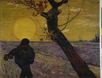 Van Gogh / Sämann untergehende Sonne/1888 von AKG  Images