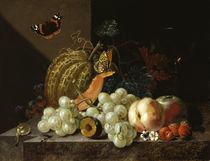 J. A. Winck, Früchtestillleben mit Weinglas und Insekten von AKG  Images