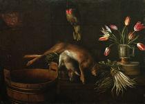 S.Stosskopf, Stilleben mit Papagei von AKG  Images
