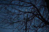 half moon  by Bahar Tunc