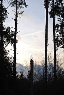 hinter dem Grau der blaue Himmel... by loewenherz-artwork