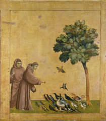 St. Francis of Assisi preaching to the birds by Giotto di Bondone
