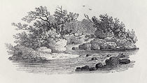 A Bend in the River from 'History of British Birds von Thomas Bewick