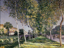 The Walk, 1890 by Alfred Sisley