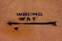 Wrong Way! by Sonja Dürnberger