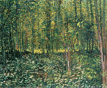 Trees and Undergrowth, 1887 by Vincent Van Gogh