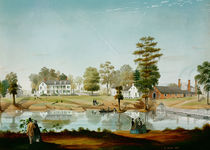 The Olivier Plantation, 1861 by Adrien Persac
