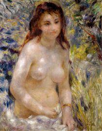 Study. Torso, effect of sunlight von Pierre-Auguste Renoir