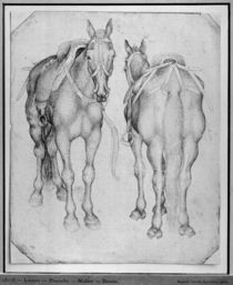 Two horses, from the The Vallardi Album von Antonio Pisanello