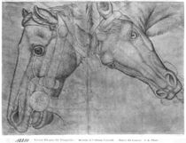 Heads of horses, from the The Vallardi Album von Antonio Pisanello
