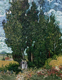 The cypresses, c.1889-90 by Vincent Van Gogh