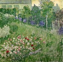 Daubigny's garden, 1890 von Vincent Van Gogh