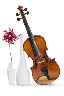 Still-life with a violin, white vases and flower made of wool by Valentin Ivantsov
