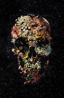 Smyrna by Ali GULEC