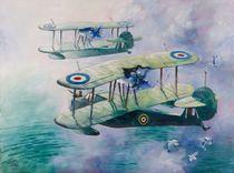 Two Walrus aircraft by Geoff Amos