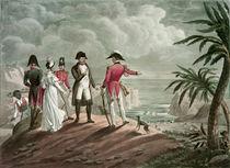 Bonaparte on St. Helena by Francois Martinet