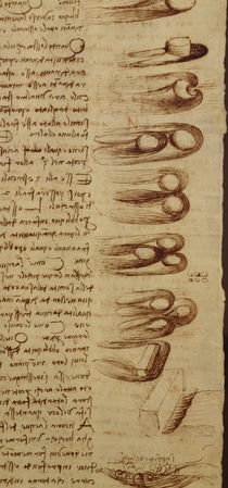 Scientific diagrams, from the 'Codex Leicester' by Leonardo Da Vinci