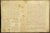 A page from the Codex Leicester von Leonardo Da Vinci