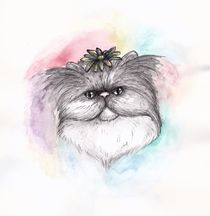 Persian Flower Cat  by Jessica May