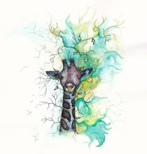 Colourful Giraffe by Jessica May