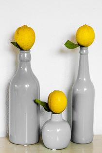 Three bottles & three lemons von vasa-photography