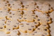 Snowy cookies von vasa-photography