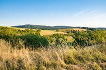 Goldgelbe Hügel im Hochsommer by Ronald Nickel