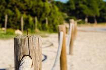 The beach border by vasa-photography