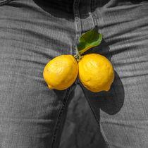 A couple of lemons von vasa-photography